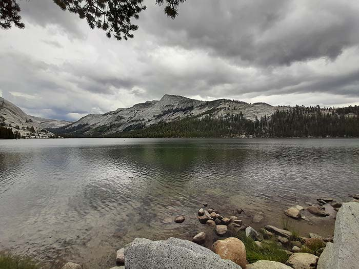 Yosemite Park - Tenaya Lake